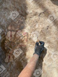 Descubrimiento de Estuco policromado en la Villa Romana de Salar GRANADA
