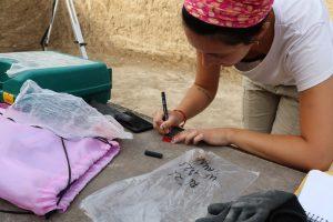 Recogida de muestras excavación de Salar